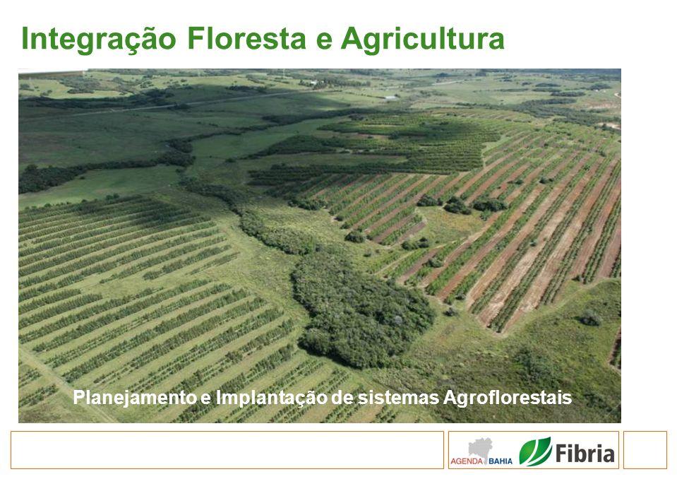 Planejamento e Implantação de sistemas Agroflorestais