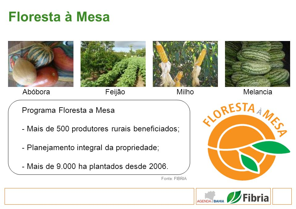 Floresta à Mesa Programa Floresta a Mesa