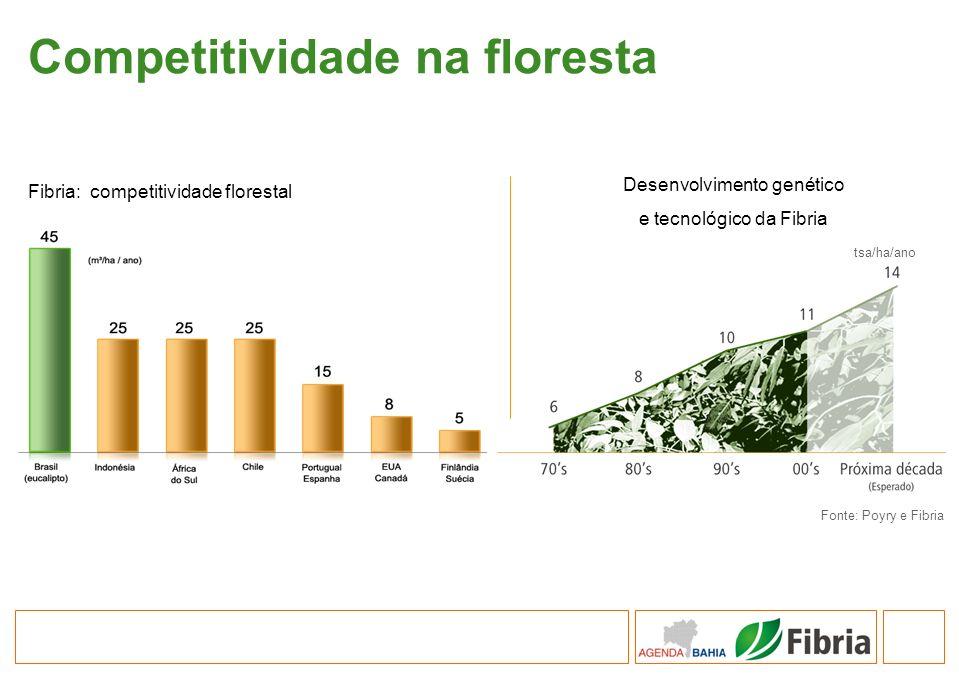 Competitividade na floresta