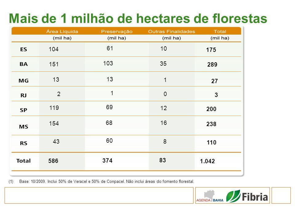 Mais de 1 milhão de hectares de florestas