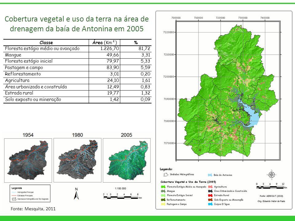 Cobertura vegetal e uso da terra na área de drenagem da baía de Antonina em 2005