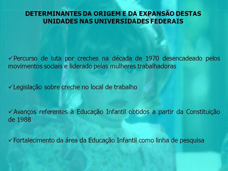DETERMINANTES DA ORIGEM E DA EXPANSÃO DESTAS UNIDADES NAS UNIVERSIDADES FEDERAIS