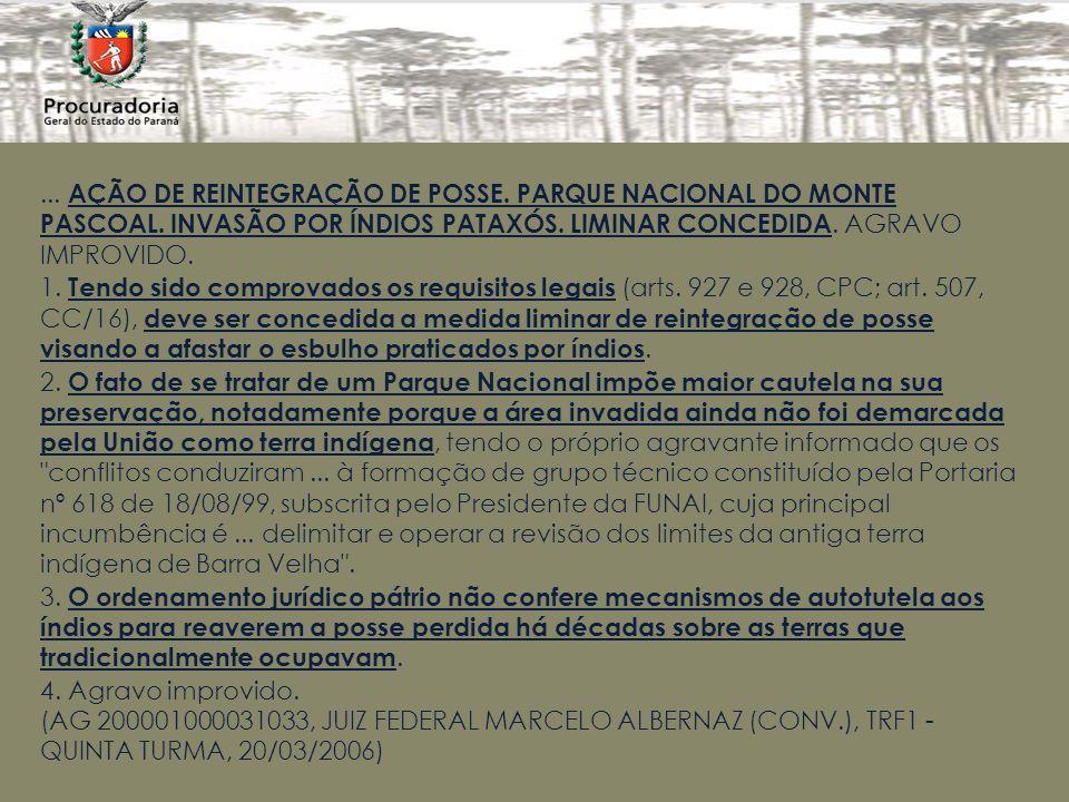 AÇÃO DE REINTEGRAÇÃO DE POSSE. PARQUE NACIONAL DO MONTE PASCOAL