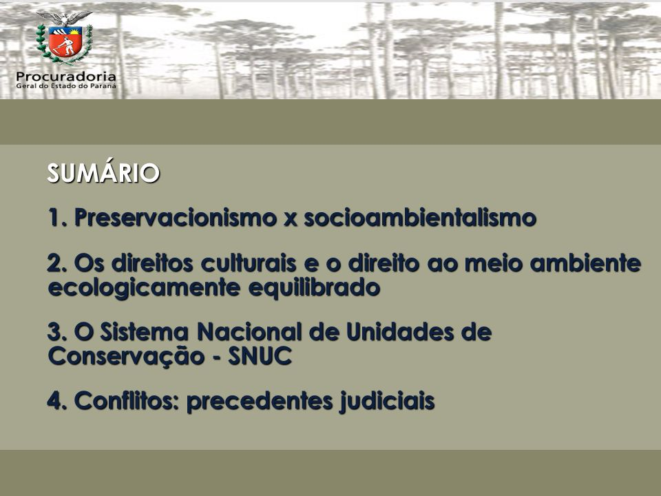 SUMÁRIO 1. Preservacionismo x socioambientalismo