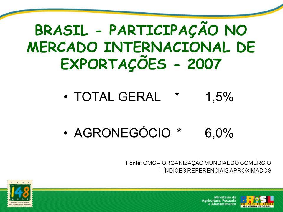 BRASIL - PARTICIPAÇÃO NO MERCADO INTERNACIONAL DE EXPORTAÇÕES - 2007