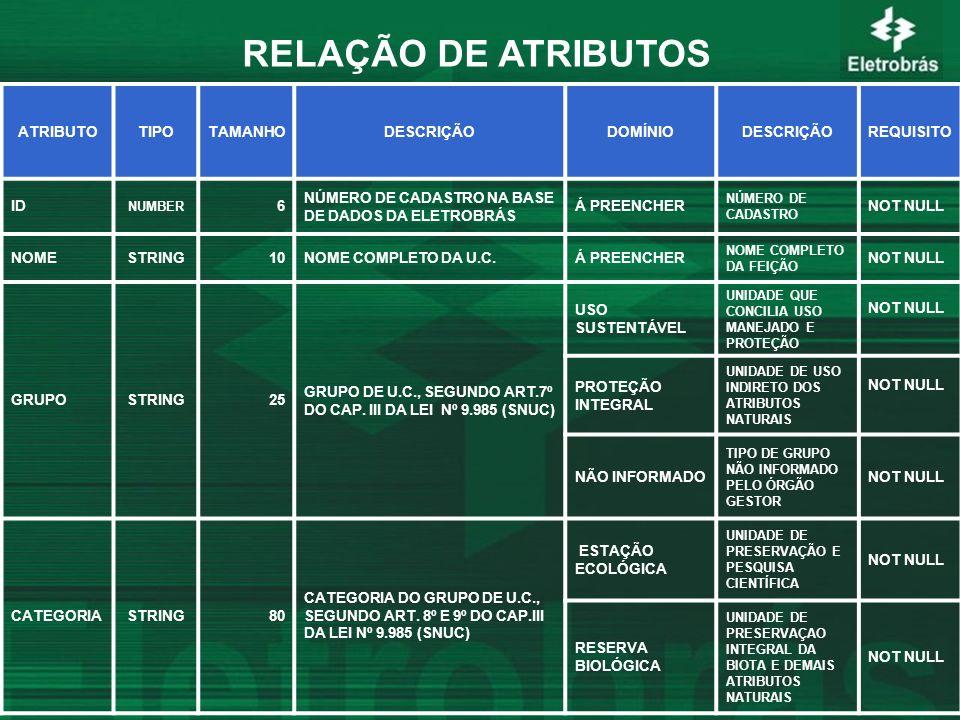 RELAÇÃO DE ATRIBUTOS ATRIBUTO TIPO TAMANHO DESCRIÇÃO DOMÍNIO REQUISITO