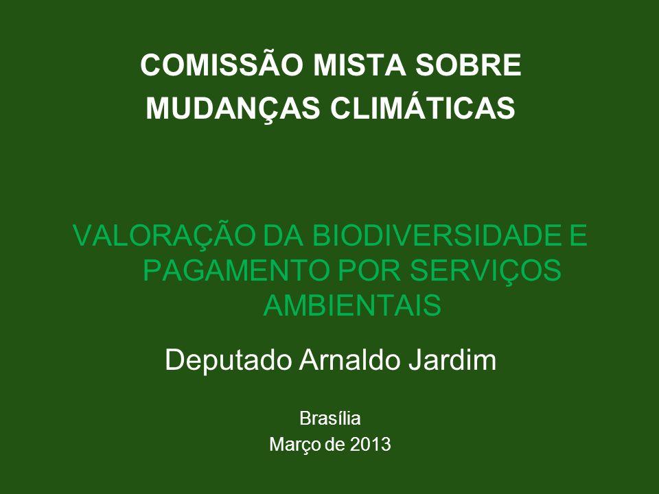 COMISSÃO MISTA SOBRE MUDANÇAS CLIMÁTICAS