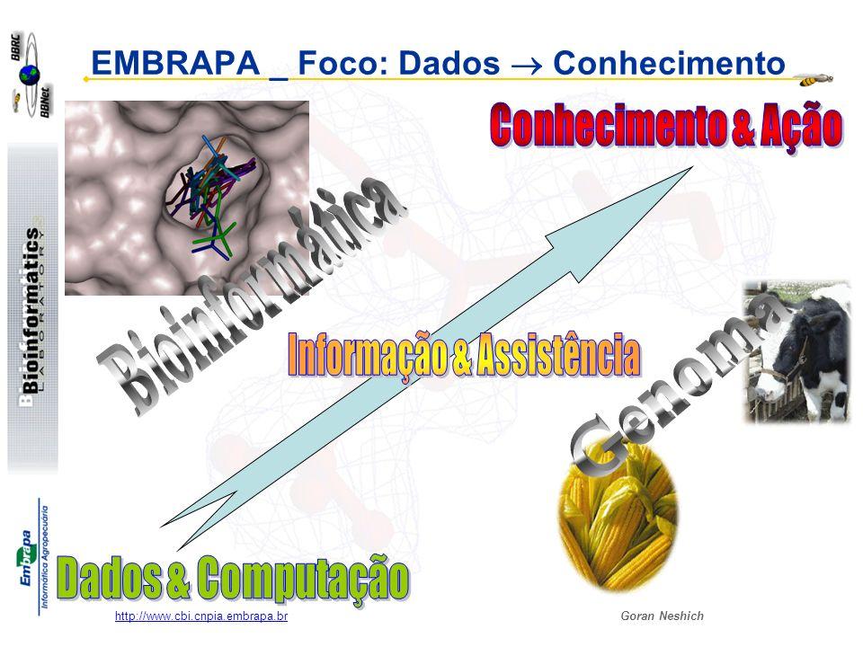 EMBRAPA _ Foco: Dados  Conhecimento