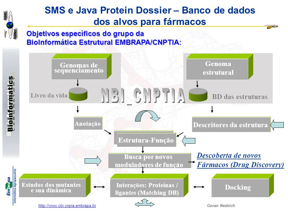 SMS e Java Protein Dossier – Banco de dados dos alvos para fármacos