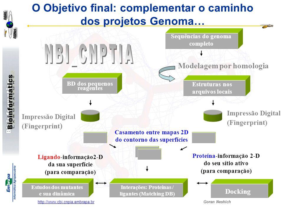 O Objetivo final: complementar o caminho dos projetos Genoma…