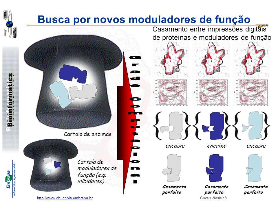Busca por novos moduladores de função