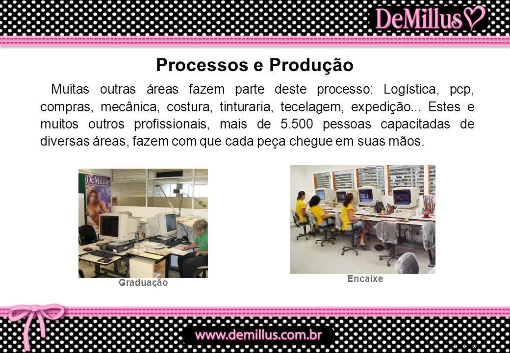 Processos e Produção
