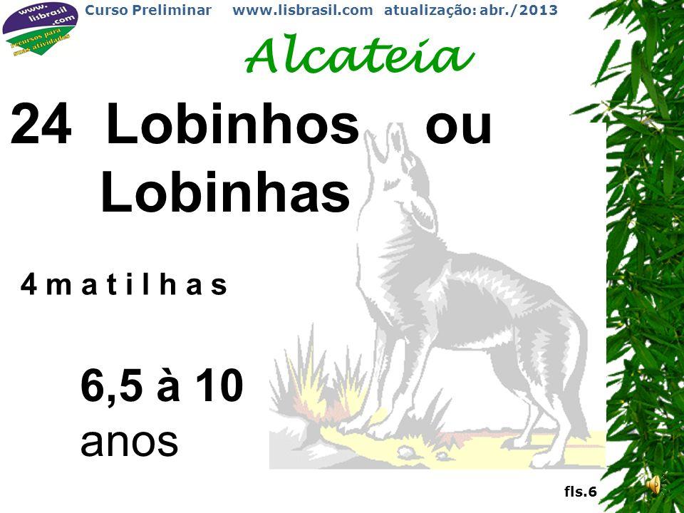Alcateia 24 Lobinhos ou Lobinhas 4 m a t i l h a s 6,5 à 10 anos