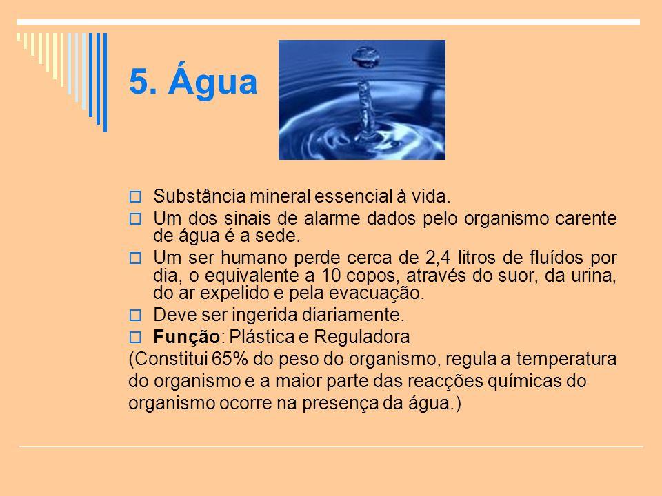 5. Água Substância mineral essencial à vida.