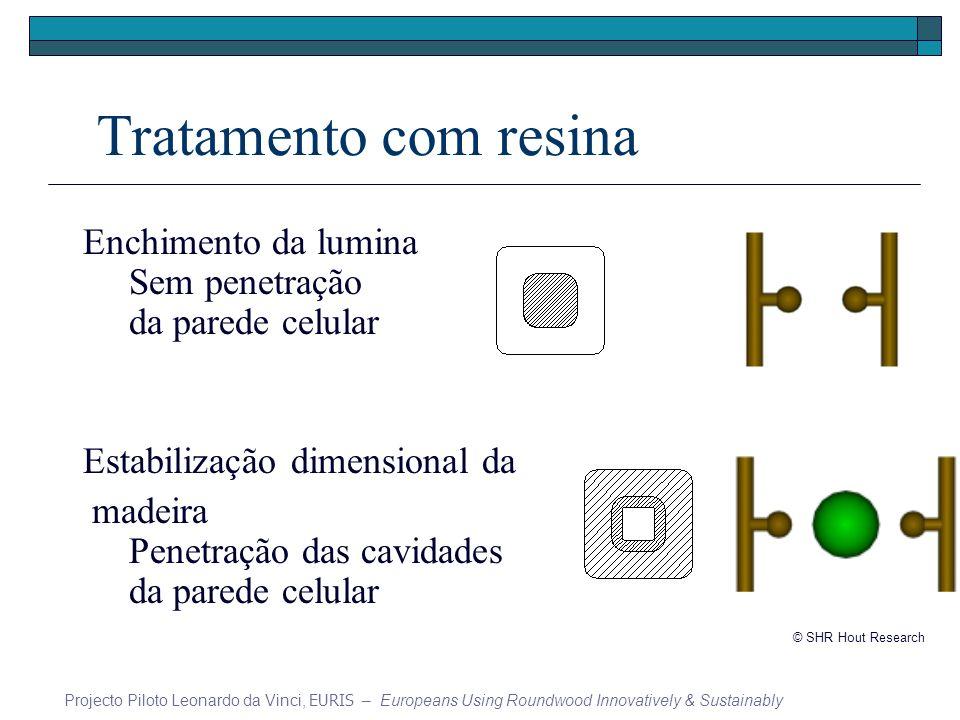 Tratamento com resina Enchimento da lumina Sem penetração da parede celular. Estabilização dimensional da.
