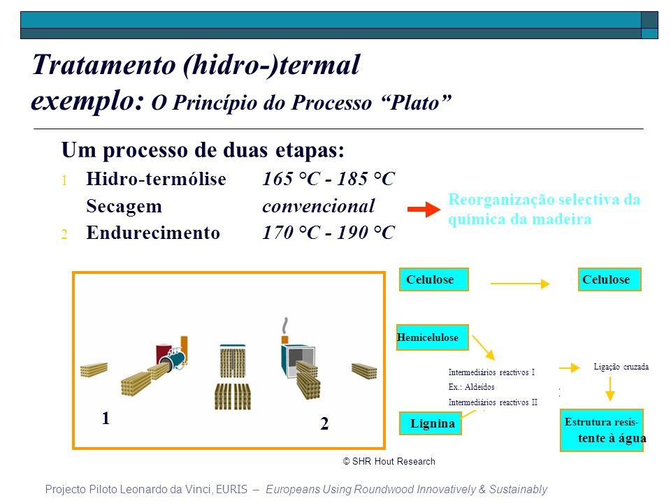 Tratamento (hidro-)termal exemplo: O Princípio do Processo Plato