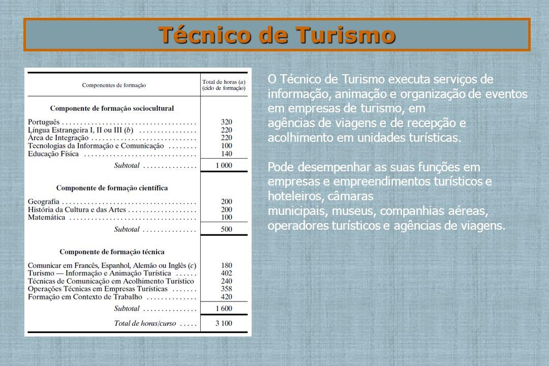 Técnico de Turismo O Técnico de Turismo executa serviços de informação, animação e organização de eventos em empresas de turismo, em.