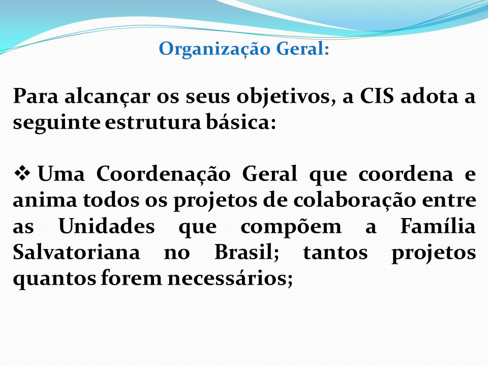 Organização Geral: Para alcançar os seus objetivos, a CIS adota a seguinte estrutura básica:
