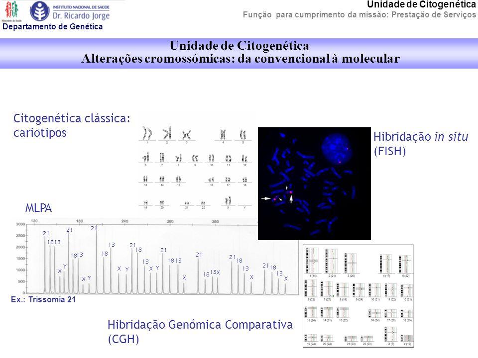 Unidade de Citogenética