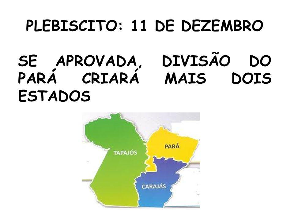 PLEBISCITO: 11 DE DEZEMBRO