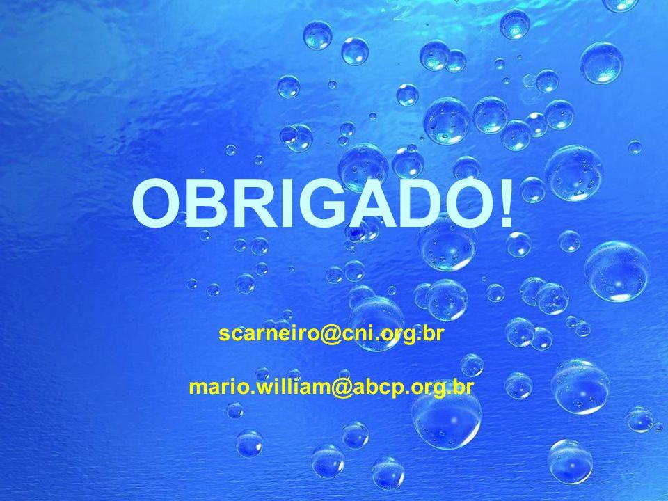 OBRIGADO! scarneiro@cni.org.br mario.william@abcp.org.br