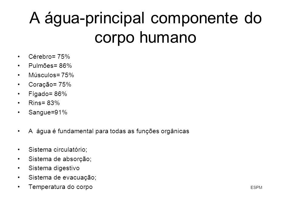 A água-principal componente do corpo humano