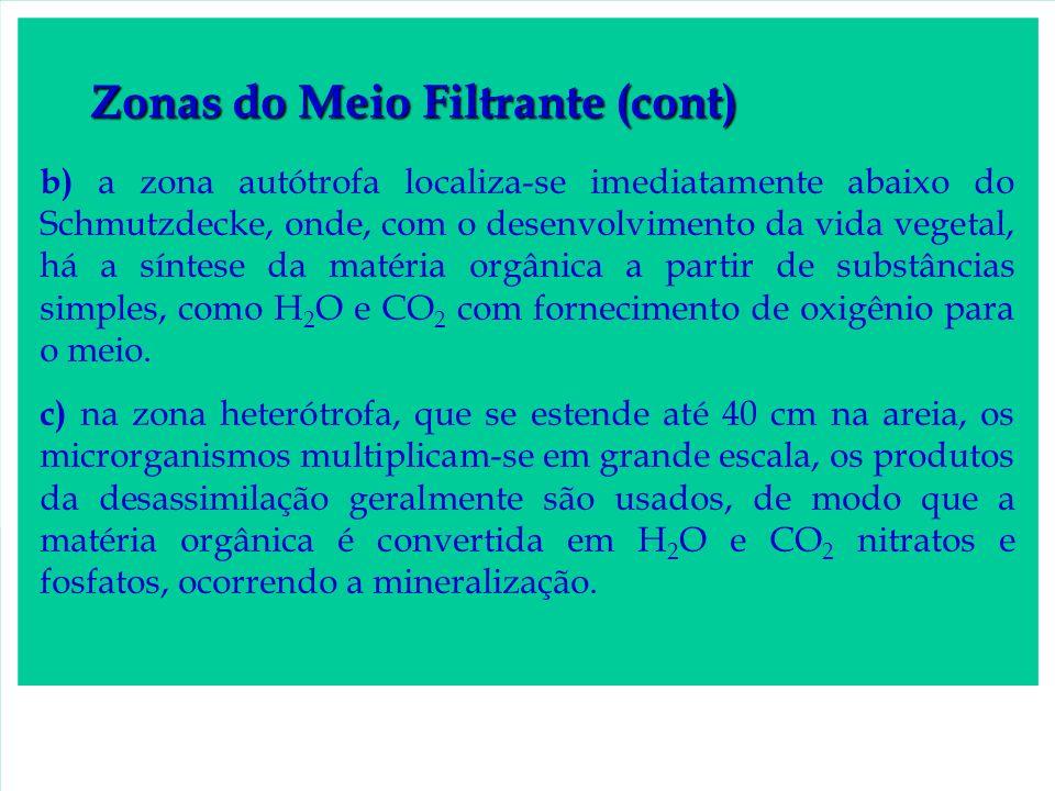 Zonas do Meio Filtrante (cont)
