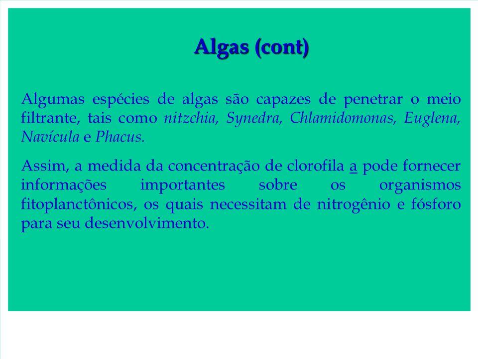 Algas (cont)