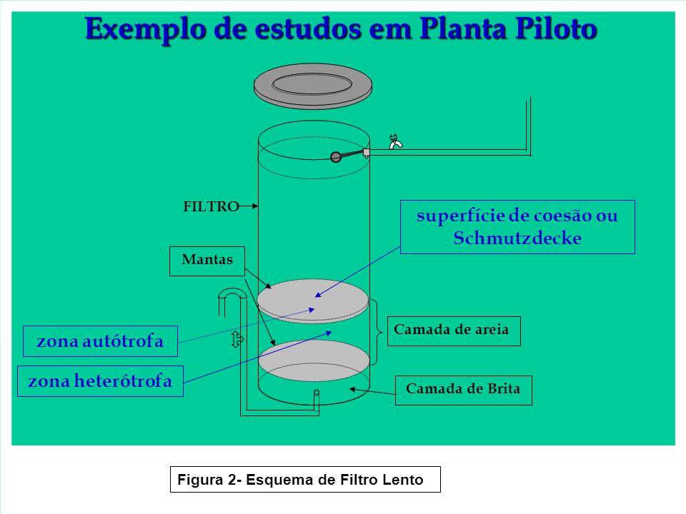 Exemplo de estudos em Planta Piloto