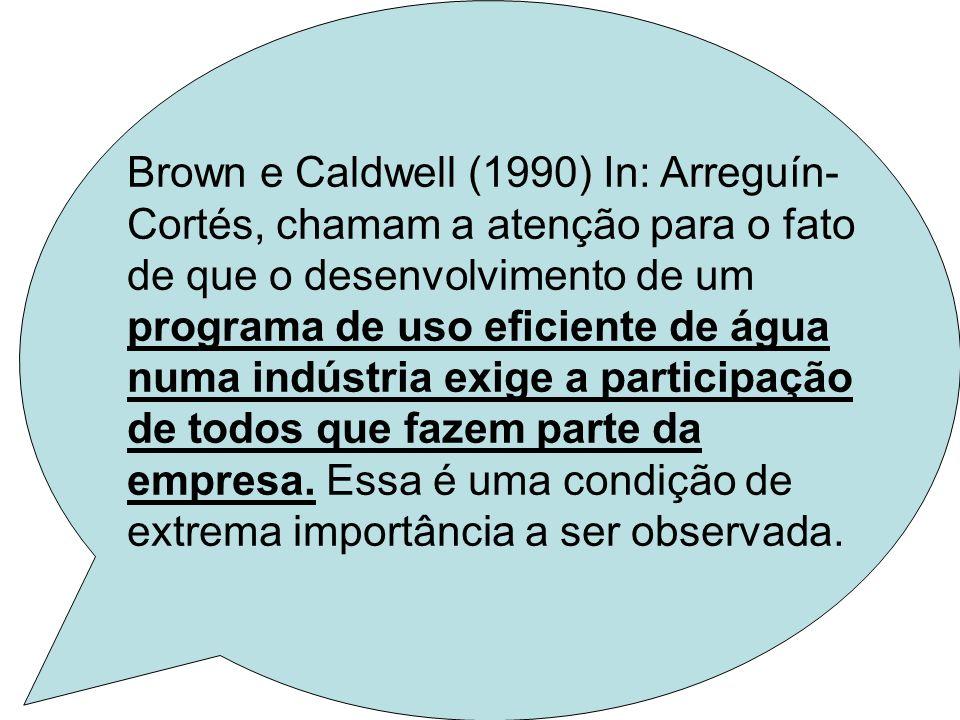 Brown e Caldwell (1990) In: Arreguín-Cortés, chamam a atenção para o fato de que o desenvolvimento de um programa de uso eficiente de água numa indústria exige a participação de todos que fazem parte da empresa.