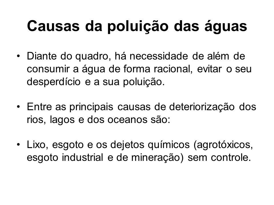 Causas da poluição das águas