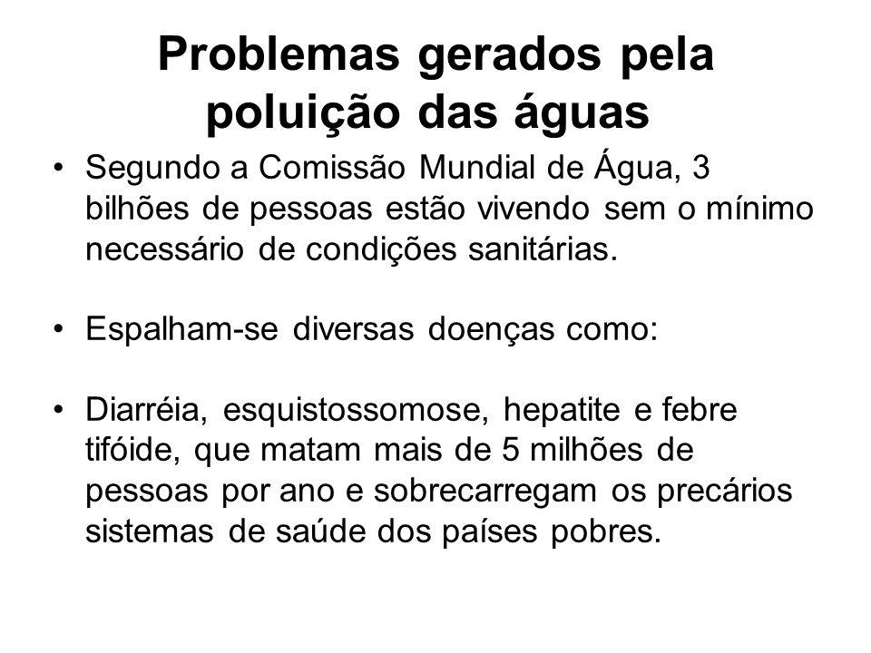 Problemas gerados pela poluição das águas