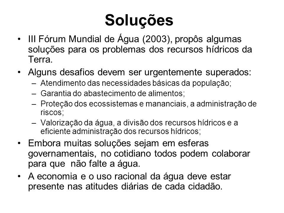 Soluções III Fórum Mundial de Água (2003), propôs algumas soluções para os problemas dos recursos hídricos da Terra.