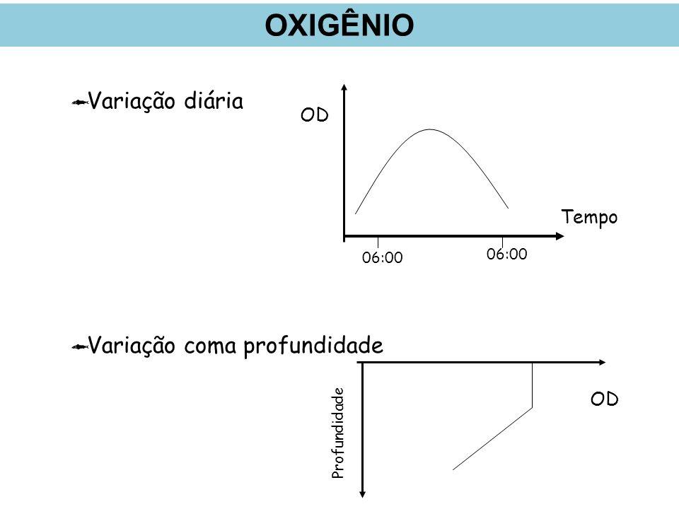 OXIGÊNIO Variação diária Variação coma profundidade OD Tempo OD 06:00