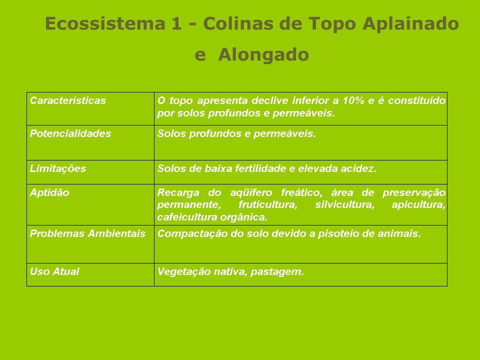 Ecossistema 1 - Colinas de Topo Aplainado e Alongado