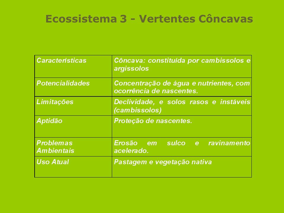 Ecossistema 3 - Vertentes Côncavas