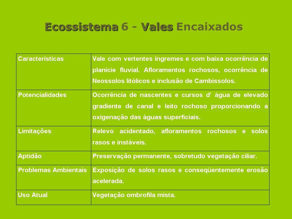 Ecossistema 6 - Vales Encaixados