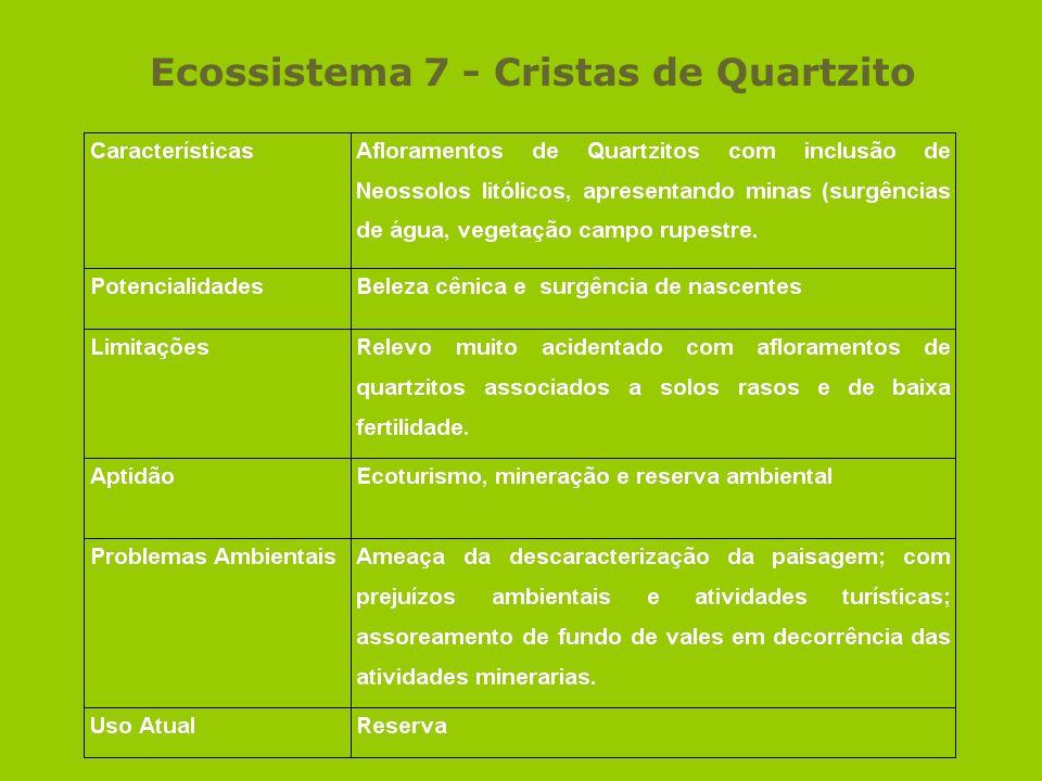 Ecossistema 7 - Cristas de Quartzito