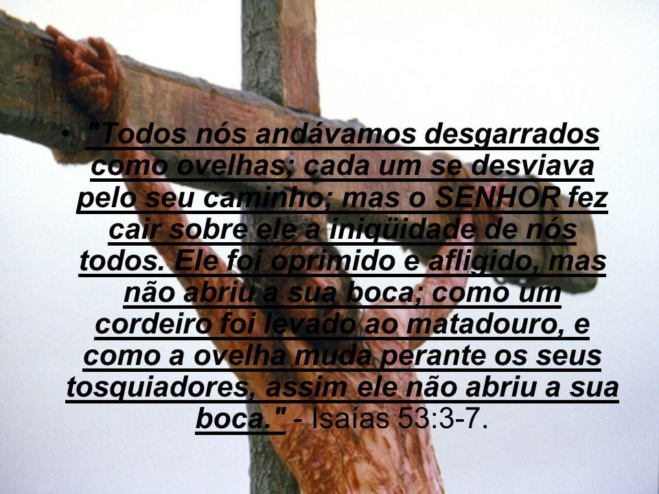 Todos nós andávamos desgarrados como ovelhas; cada um se desviava pelo seu caminho; mas o SENHOR fez cair sobre ele a iniqüidade de nós todos.