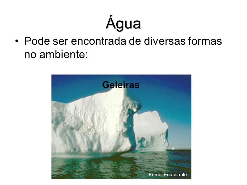 Água Pode ser encontrada de diversas formas no ambiente: Geleiras