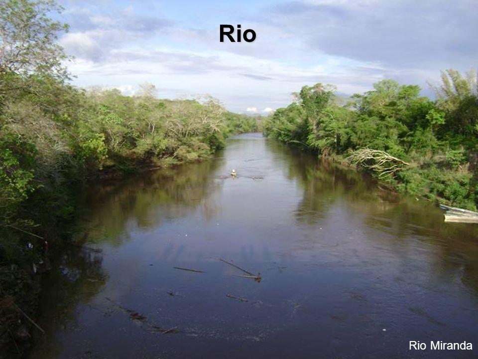 Rio Rio Miranda
