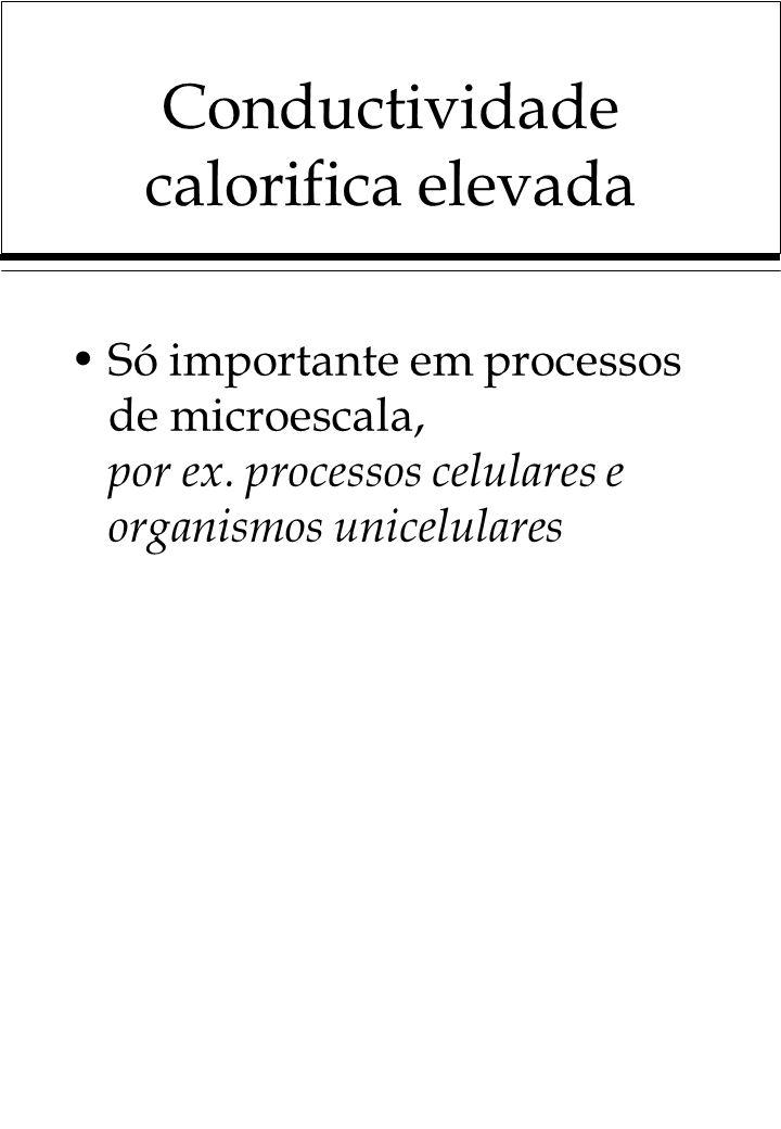 Conductividade calorifica elevada