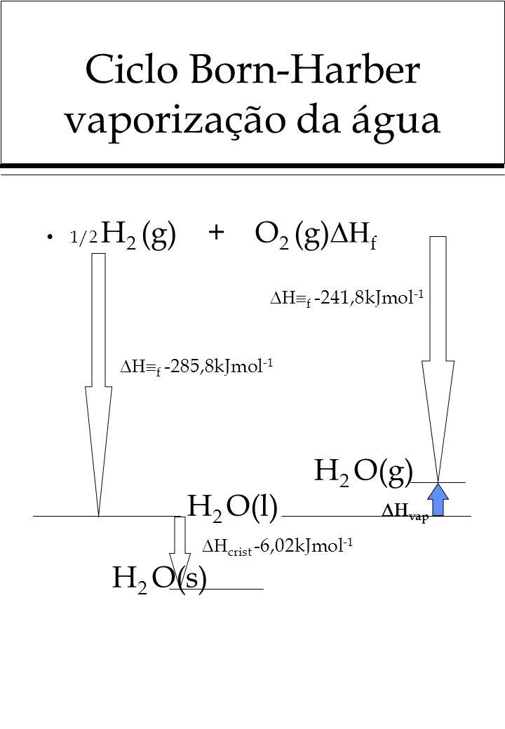 Ciclo Born-Harber vaporização da água