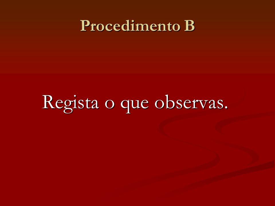 Procedimento B Regista o que observas.