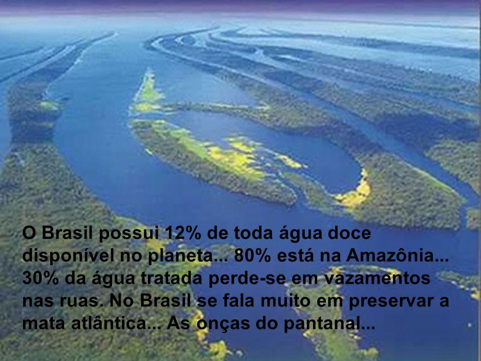 O Brasil possui 12% de toda água doce disponível no planeta