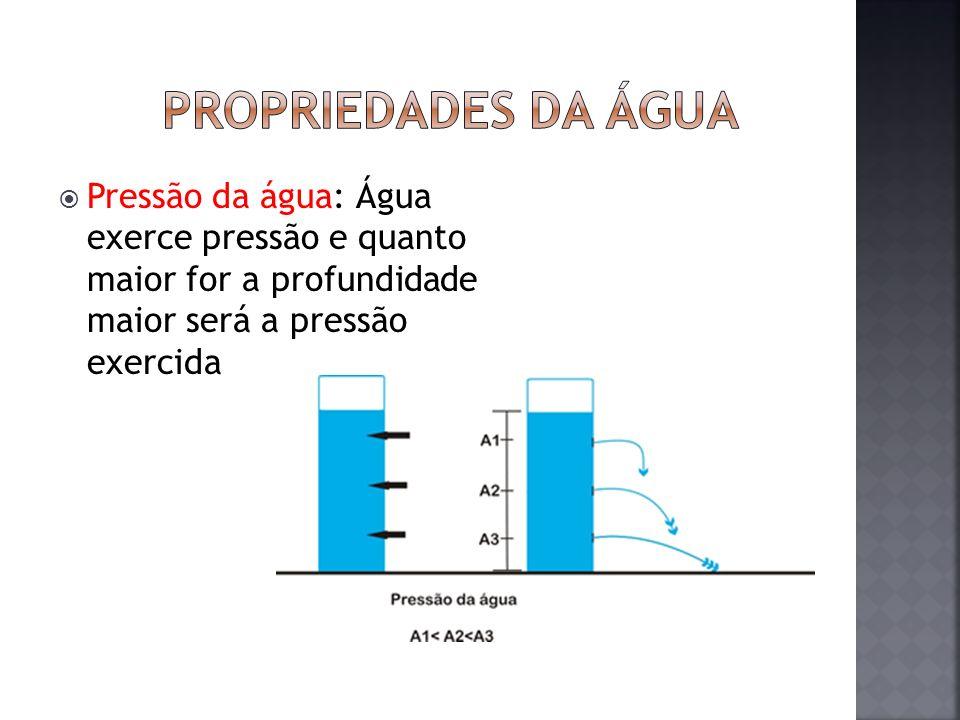 Propriedades da água Pressão da água: Água exerce pressão e quanto maior for a profundidade maior será a pressão exercida.