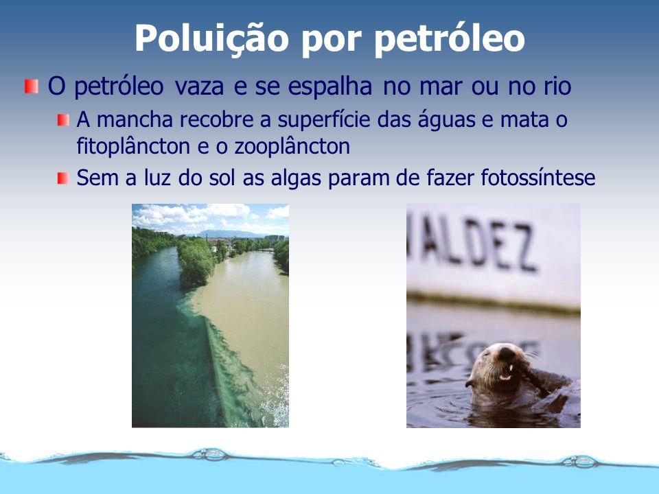 Poluição por petróleo A quantidade de oxigênio diminui e outras espécies acabam por morrer.