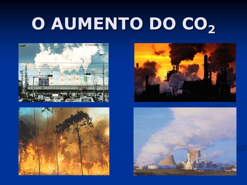 O AUMENTO DO CO2