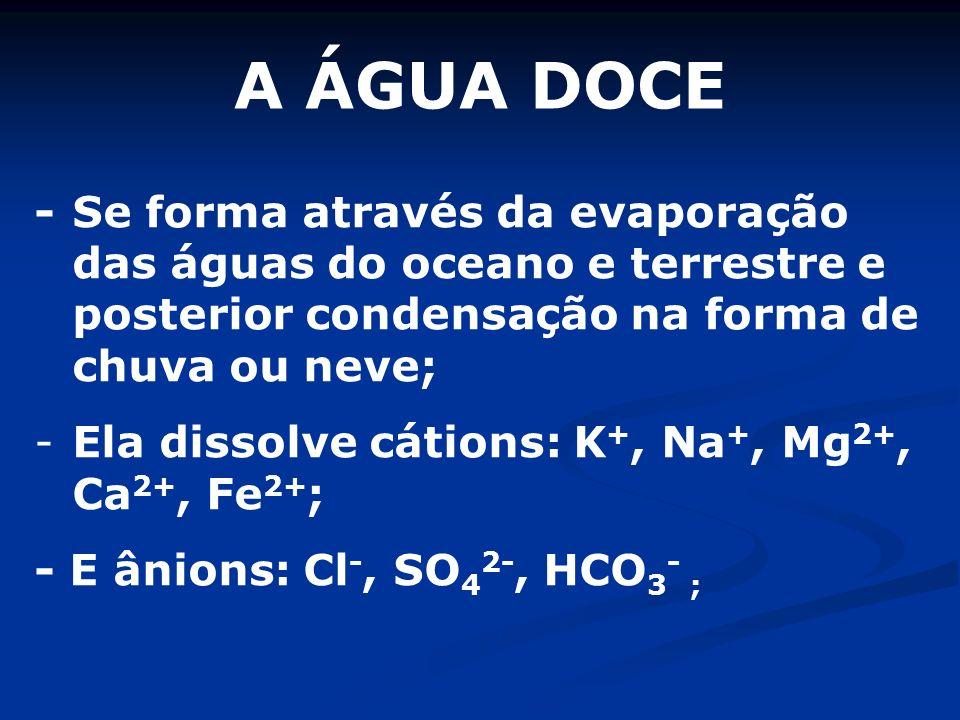 A ÁGUA DOCE - Se forma através da evaporação das águas do oceano e terrestre e posterior condensação na forma de chuva ou neve;