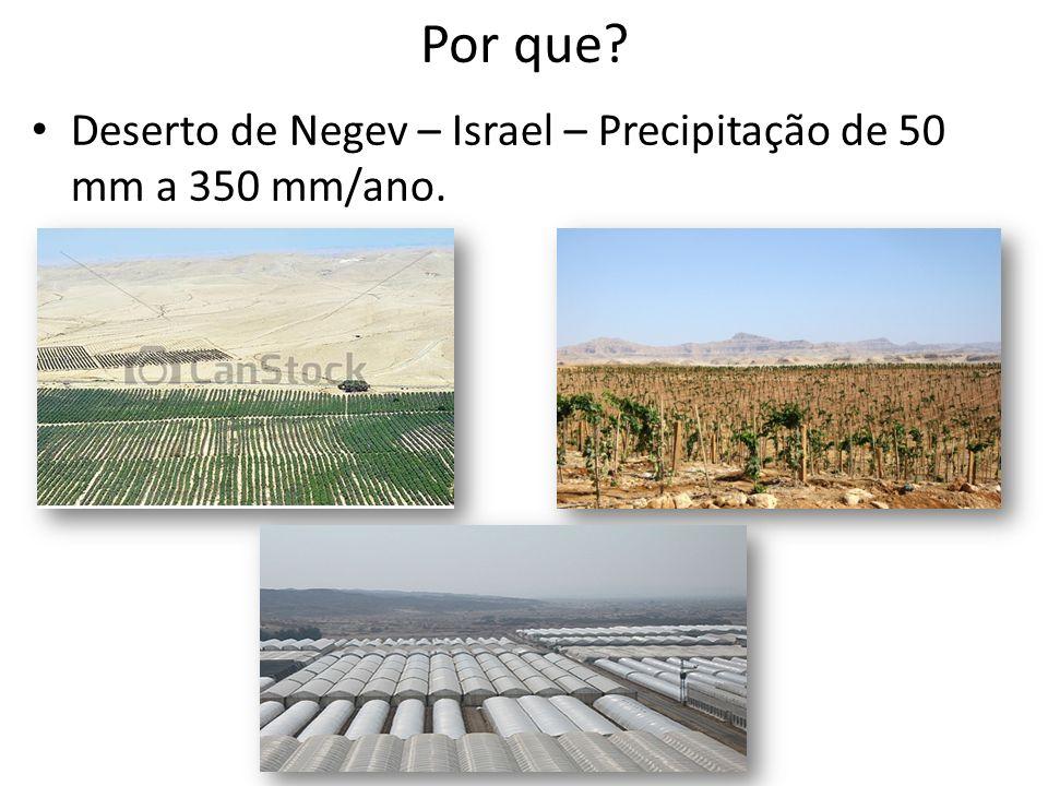 Por que Deserto de Negev – Israel – Precipitação de 50 mm a 350 mm/ano.